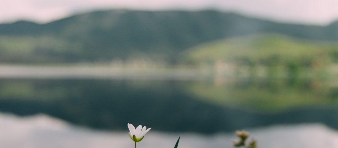 Photo by Mourad Saadi on Unsplash